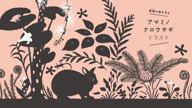 [奄美大島の豊かな自然を守るために 「アマミノクロウサギ・トラスト2020」]の画像