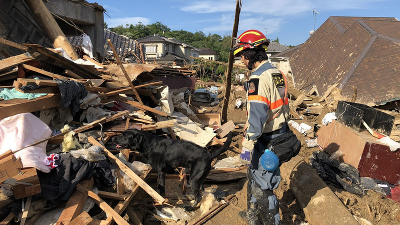 [【令和元年台風19号被災地支援】被災された方々と犬猫達のために(日本レスキュー協会)]の画像