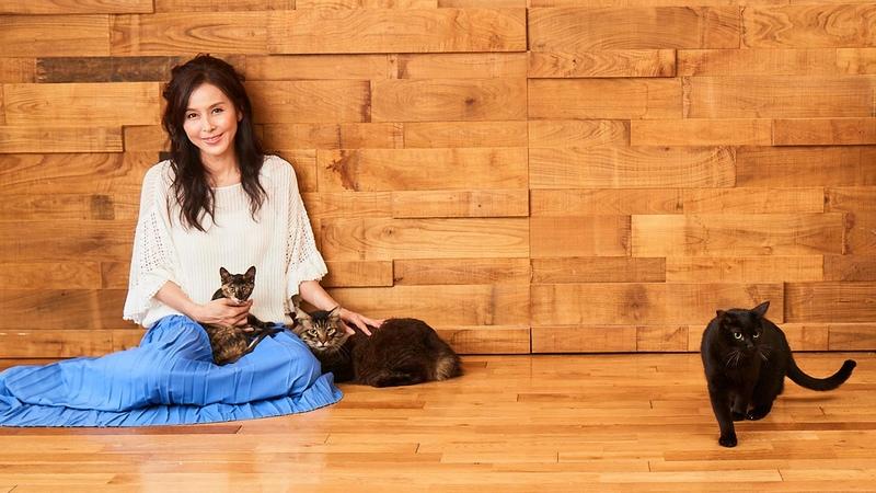 [「大きな声、大きな力」で日本の動物福祉の向上を]の画像