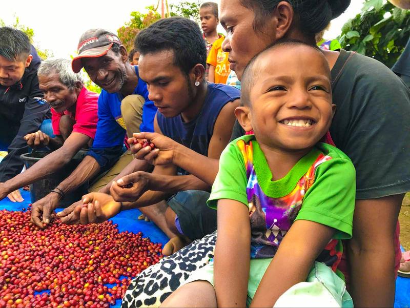 [【東ティモール】輸出の大半を占めるコーヒーを未来永劫続く産業に (ピースウィンズ・ジャパン)]の画像