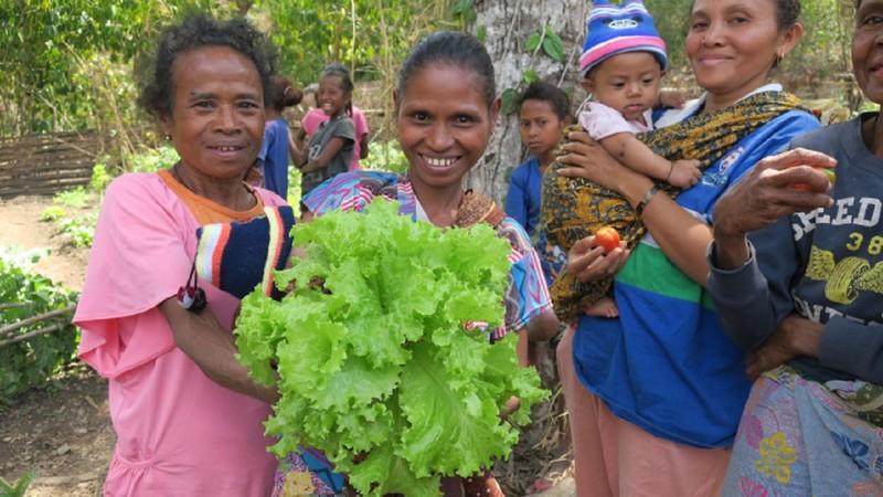 [【国際NGO CARE】 水へのアクセス不足を解消して、 東ティモールの人々の農業の活性化を!]の画像