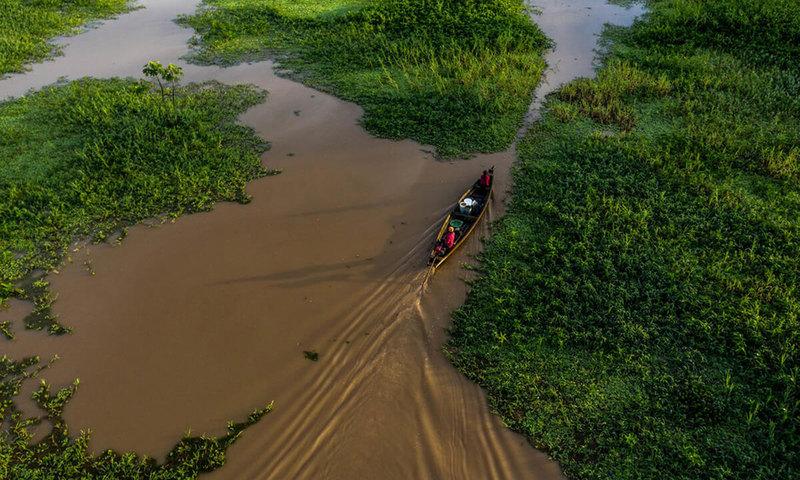 [グリーン・リカバリーでコロナ禍をこえ、サステナブルな社会へ (WWFジャパン)]の画像