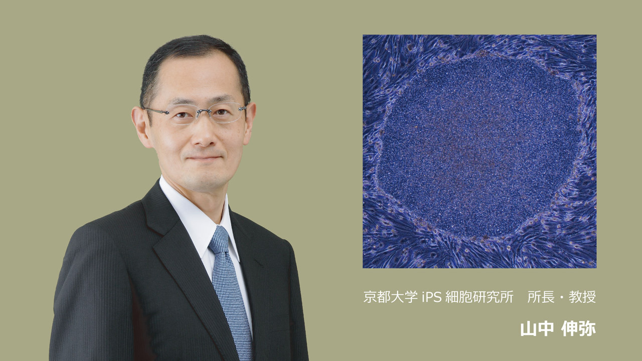 [難病や障害で苦しむ人々を救いたい。 山中伸弥所長率いる京都大学iPS細胞研究所に安定した研究環境を!]の画像