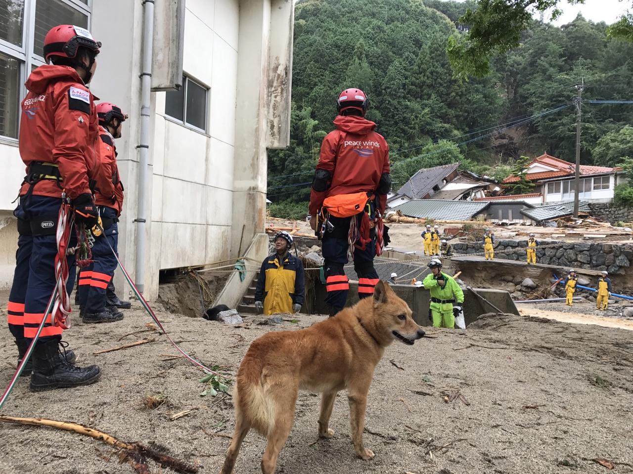 [九州豪雨被災者支援(ピースウィンズ・ジャパン)]の画像