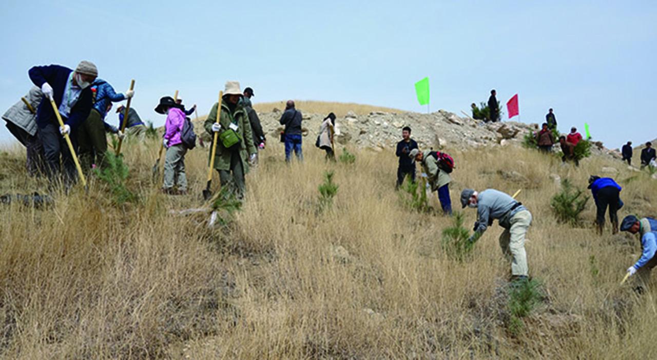[黄土高原に持続可能で多様性のある森林を再生しよう!]の画像