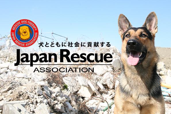 [災害救助犬、セラピードッグの育成派遣 大切な命を救う動物福祉活動にご協力下さい!]の画像