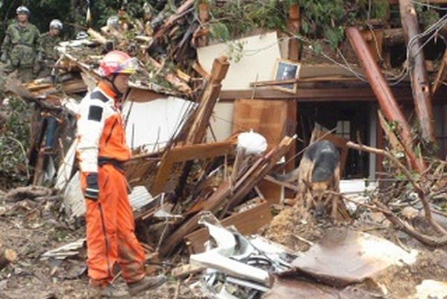 [ネパール地震緊急支援基金]の画像