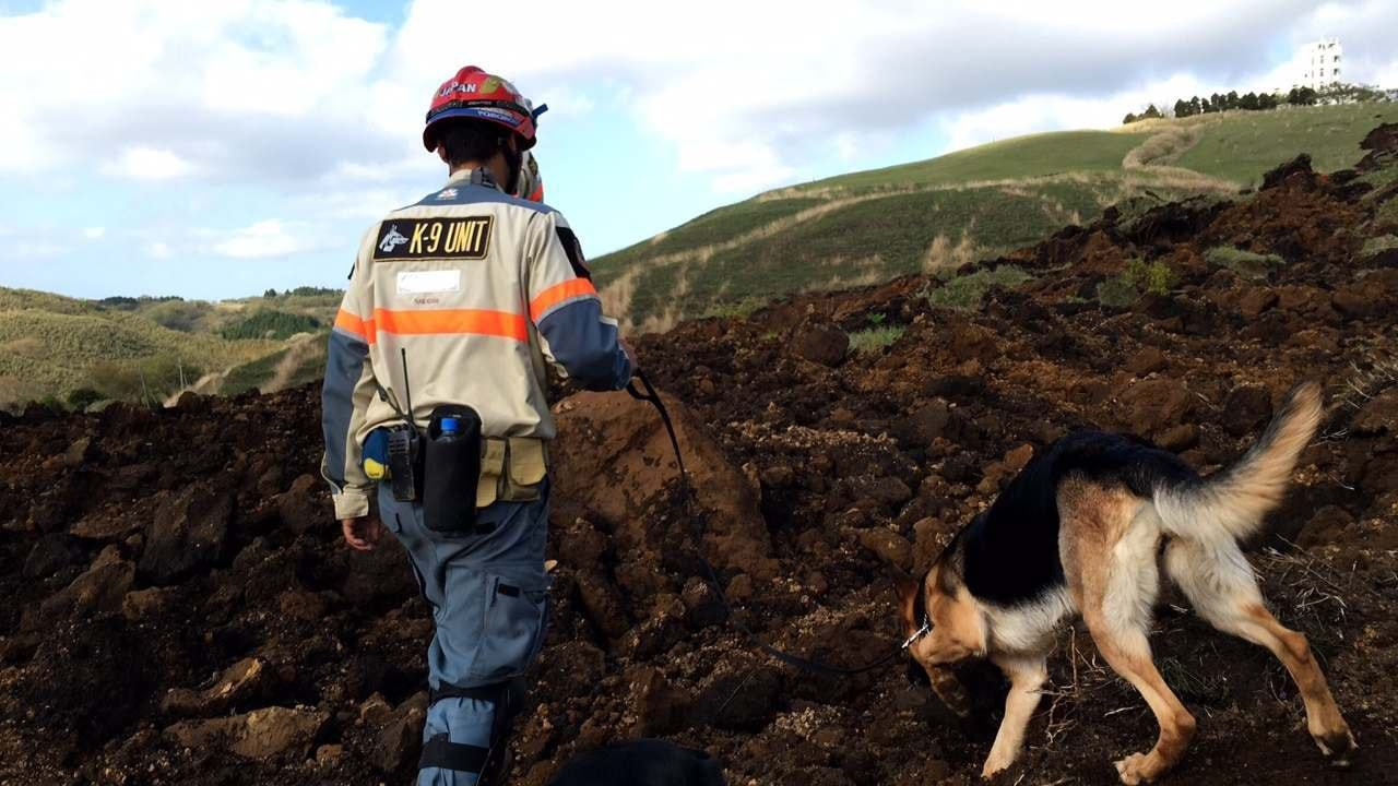 [熊本地震被災地支援 被災された方々に癒やしと元気を]の画像